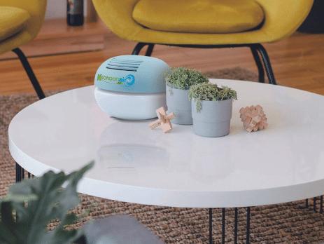 purificateur d'air contre les allergies